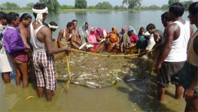 Raigarh news fishing