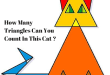 How Many Triangles Can You Count In This Cat ?