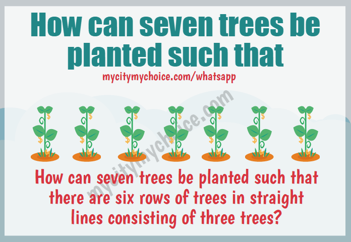 How can seven trees be planted such that