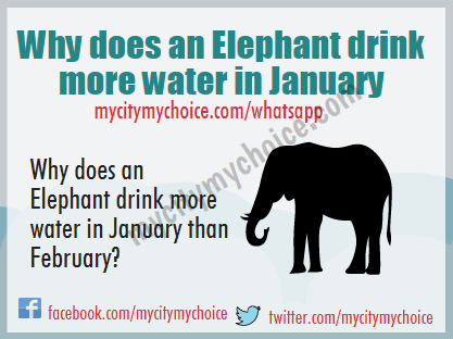 Why does an Elephant drink more water in January than February? - Whatsapp Puzzle