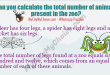 A deer has four legs, a spider has eight legs and a cricket has six legs. The total number of legs found at a zoo equals six hundred and twelve, which comes from an equal number of each of these animals.