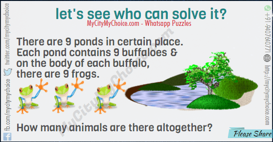 There are 9 ponds in certain place. Each pond contains 9 buffaloes & on the body of each buffalo, there are 9 frogs. How many animals are there altogether?