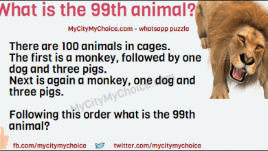 There are 100 animals in cages. The first is a monkey, followed by one dog and three pigs. Next is again a monkey, one dog and three pigs. Following this order what is the 99th animal?