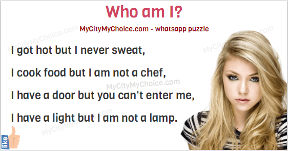I got hot but I never sweat, I cook food but I am not a chef, I have a door but you can't enter me, I have a light but I am not a lamp.