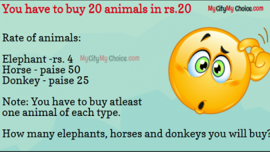 Buy 20 animals puzzle answer