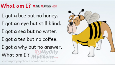 I got a bee but no honey. I got an eye but still blind. I got a sea but no water. I got a tea but no coffee. I got a why but no answer. What am I ?