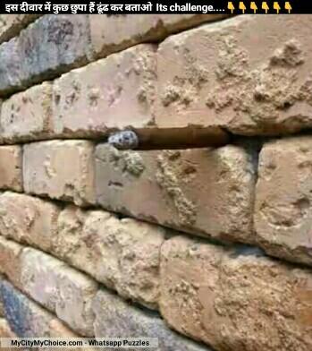 इस दीवार में कुछ छुपा हैं ढूंढ कर बताओ