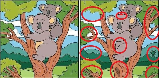 Can you find 10 differences