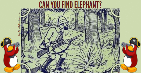 Can you find elephant in this picture