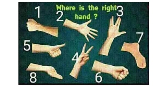 Where is the right hand?